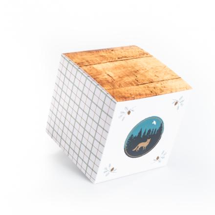 Qbox 500 Lupa